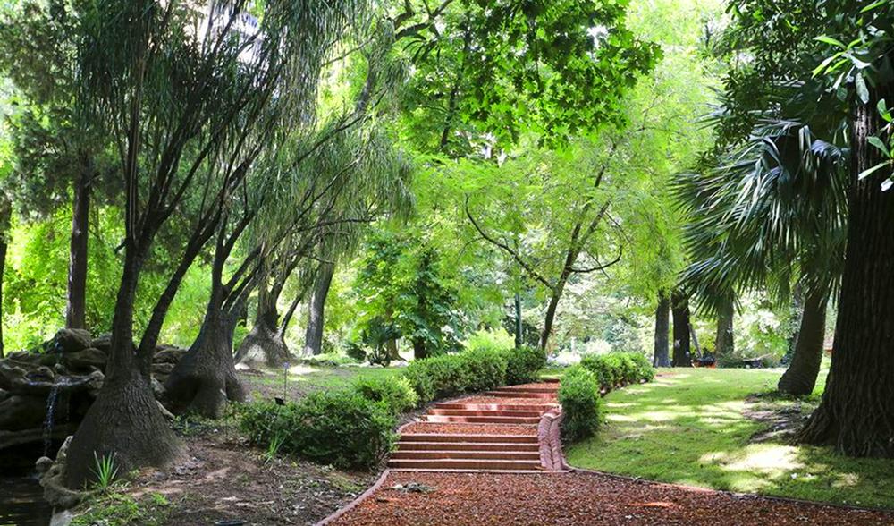 El jard n bot nico recupera su esplendor argentear for Jardin botanico contacto